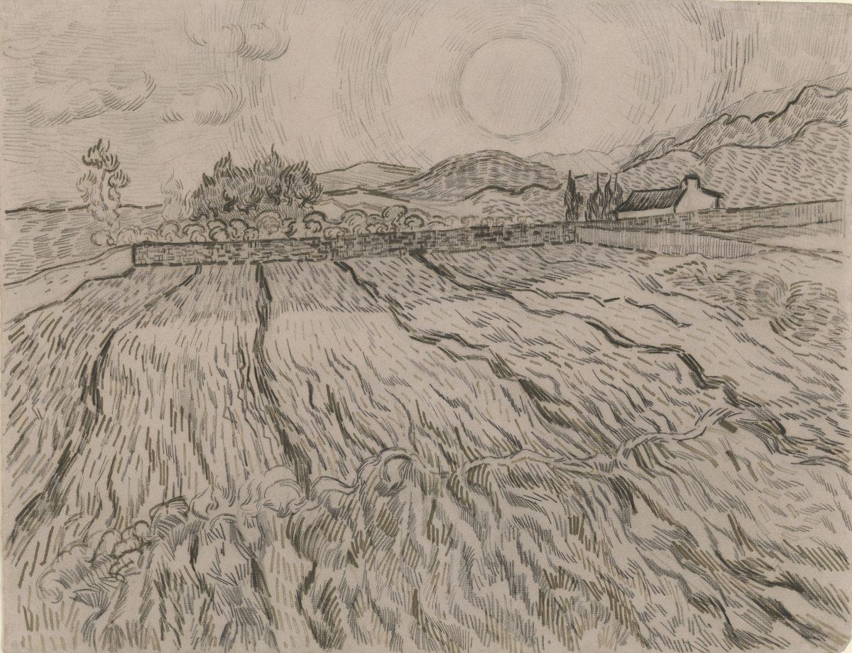 Vincent van Gogh, Weizenfeld mit aufgehender Sonne, 1889, Schwarze Kreide und Rohrfeder in Braun, 474 x 620 mm Blattmaß © Staatliche Graphische Sammlung München