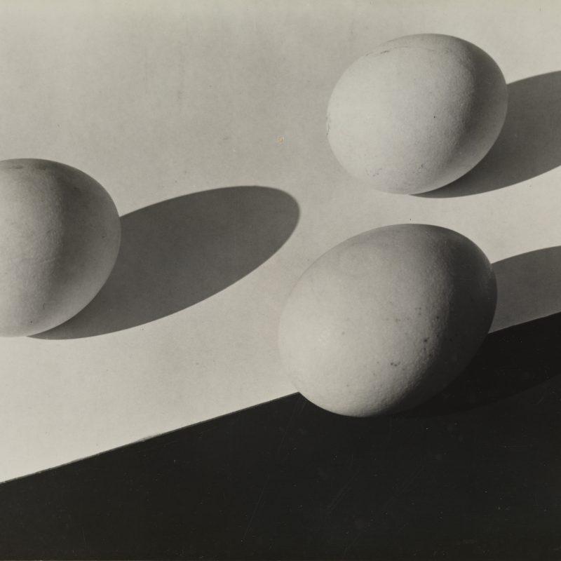 Aenne Biermann, Eier, 1931, Silbergelatine-Abzug, 17 x 23,9 cm, Foto: Sibylle Forster, Stiftung Ann und Jürgen Wilde, Pinakothek der Moderne, München