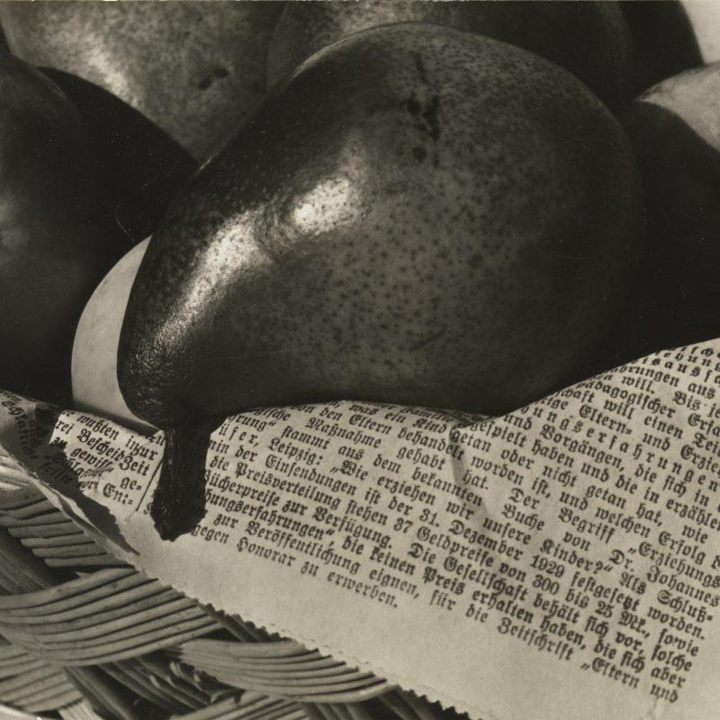 Aenne Biermann, Obstkorb, 1931, Silbergelatine-Abzug, 16,6 x 23,6 cm, Foto: Sibylle Forster, Stiftung Ann und Jürgen Wilde, Pinakothek der Moderne, München